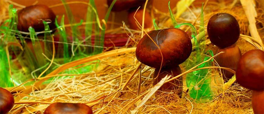 грибы из каштанов