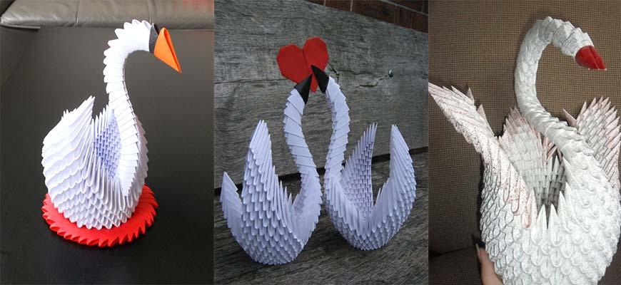оригами беголого лебедя